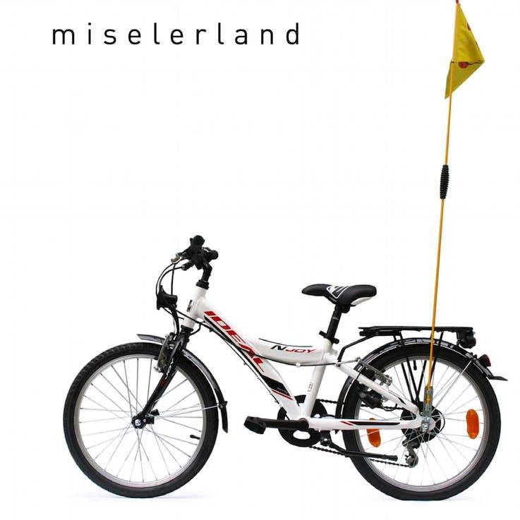 Annexe 6 Le Materiel De Location Renta Bike Miselerland 1